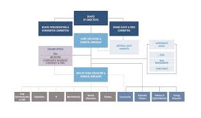 Corporate Organizational Chart With Board Of Directors Organization Structure