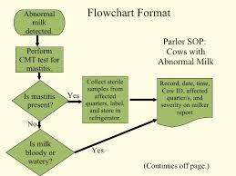 Surprising Standard Operating Procedure Flow Chart Template