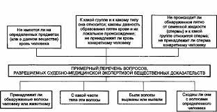 Курсовая тактика и методика прокурорского надзора cкачать Курсовая тактика и методика прокурорского надзора