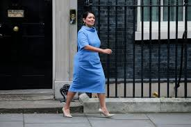 @conservatives member of parliament for witham home secretary 🇬🇧 linktr.ee/pritipatel. Home Secretary Priti Patel A Profile Thearticle