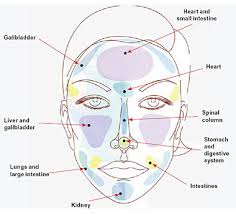 Chinese Acne Face Chart What Those Spots Are Saying China Org Cn