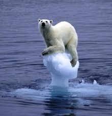 Image result for ice melting