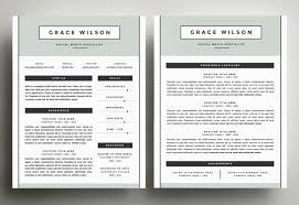 Tremendous Two Page Resume Sample 6 The Best CV Resume Templates 50 Examples