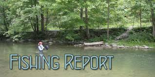 Spring Creek Presented By Tco Fly Shop