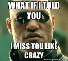 What if I told you I miss you like crazy - What if I told you ... via Relatably.com