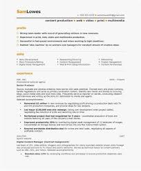 Blue Sky Resume New Producer Resume Examples Examples Of Resumes