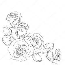 Rozen Zwart Wit Afbeelding Kleurplaat Pagina Stockvector