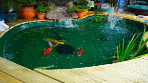 Pond Design A Raised Pond Like This Brick One Makes Caring For The Fish And