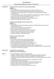 Account Executive Resume Managercription Key India Summary