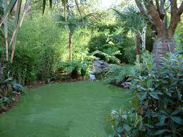Small Picture Tropical Oasis Garden and Pond Design