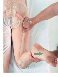 Image result for medical massage therapy techniques