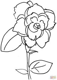 Roos Kleurplaat