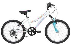 Schwinn Bike Computer Tire Size Chart Schwinn Shade 20 Inch 2020 Kids Bike