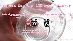 Boston Terrier Nails | SUNSHINE CITIZEN
