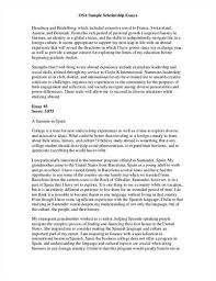 college personal essay examples samples example of for sample scholarship application essay 1 regard to 17 stunning example of personal for college resume