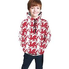 Hoodiebuddie Size Chart Eyskj Teens Hooded Sweate Red Welsh Dragon Boys Casual Hoodies Pocket Hooded Sweatshirt 7 20y