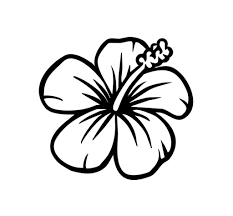 Small Picture Hawaiian Flower Coloring Pages Printable esonme