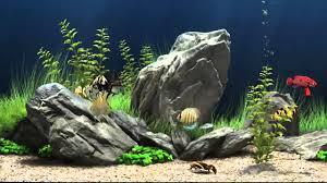 Fish Tank Screensaver Most Refreshing Free 3d Fish Tank