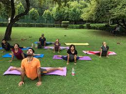 apex yoga studio photos naraina vihar delhi yoga classes