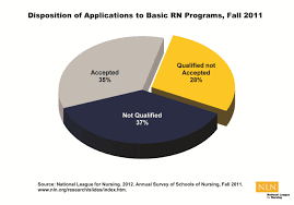 applications to nursing programs 2010 2011