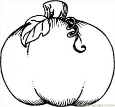 Small Picture Pumpkin Coloring Pages