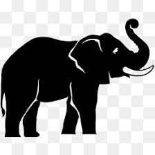 white elephant clip art png. Interesting Art Black White Elephant Elephant Clipart  White PNG Image And  Clipart Inside Clip Art Png