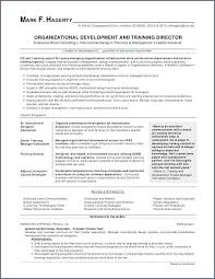 What To Put On Skills Section Of Resume Inspiration Good Skills To Have On Resume Fresh Good Skills To Put On A Resume