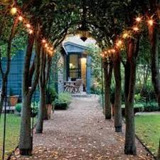 Best 25 Solar Path Lights Ideas On Pinterest  Christmas Lights Solar Powered External Lights