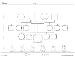 template for genogram in word free genogram template for word filename chrysler affilites