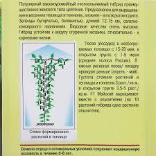 <b>Семена Огурец</b> «<b>Майский</b>» F1 в Костроме – купить по низкой ...
