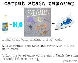 rug stain remover carpet pin this not that