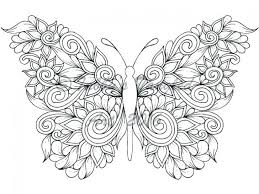 Butterfly Flowers Coloring Pages Butterflies And For Adults Free