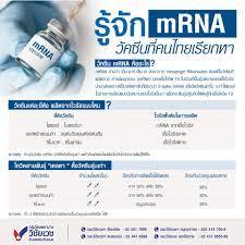 รู้จัก mRNA วัคซีนที่คนไทยเรียกหา - โรงพยาบาลวิชัยเวช อินเตอร์เนชั่นแนล  หนองแขม