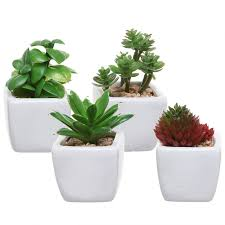 cheap office plants. 25 Office Desk Plants - Artificial Succulents Cheap