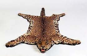 a spotted leopard skin rug with full head mount 180 cm high