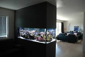 Unique Fish Tank Ideas   Archives: Modern Aquarium design for reef aquaria  and freshwater