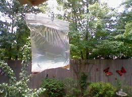 get rid of flies this summer all summer long useful tips for home