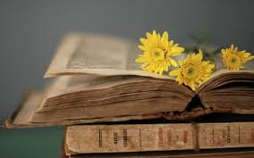 yellow flowers on the old book
