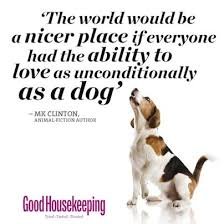 Quotes About Dogs New Our Favourite Dog Quotes Good Housekeeping