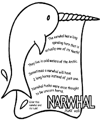 Small Picture Narwhal Coloring Page crayolacom