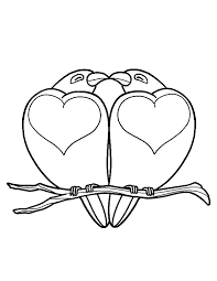 Love Bird Coloring Pages Betterfor