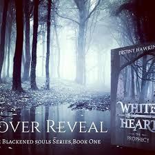 cover reveal blurb she