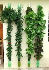 Vertical Garden Design Ideas Custom Decorating