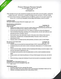 Technical Project Manager Resume Sample 20 It Project Manager Resume ...