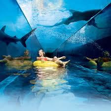 underwater water slide. Plain Slide Serpent Slide Aquaventure Bahamas Waterpark And Underwater Water I