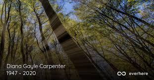 Diana Gayle Carpenter Obituary (1947 - 2020) | San Antonio, Texas