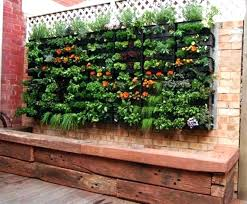 small veggie garden ideas planning a small vegetable garden garden front lawn vegetable garden plans for