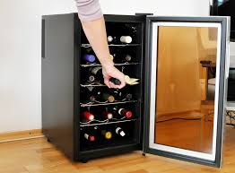 best wine cooler reviews under counter freestanding