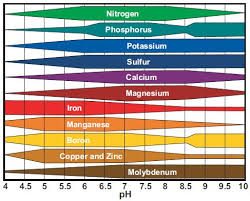 Ph Nutrient Uptake Chart Google Search In 2019 Garden
