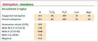 Fertigation Compatibility Chart Tomato Fertilizer Recommendations Haifa Group